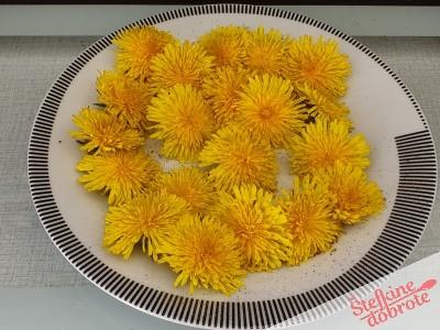 cvetovi sol poper
