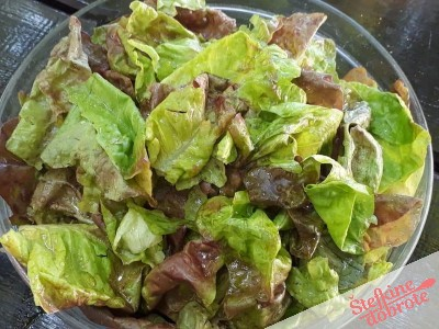4.Postrežemo s svežo domačo solato