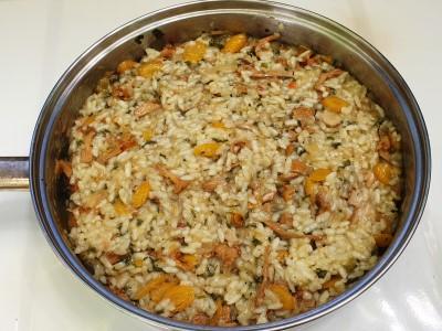 6 riz primesamo gobicam