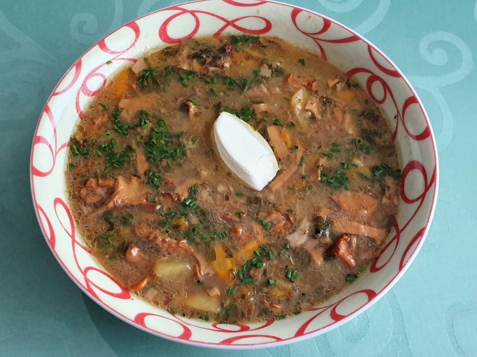 Gobova juha