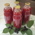 Domač robidov sok