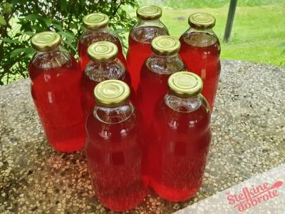11 napolnimo steklenice