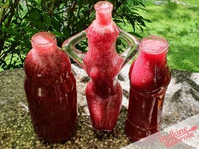 9-napolnimo-steklenice
