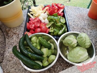 1 pripravimo zelenjavo